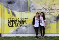 APPRENDRE A SE TAIRE @ COLLEGE JULIEN DUMAS de NERONDES (18)